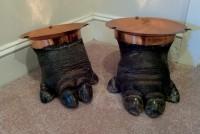 hippo feet