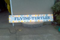 flying turtles 3