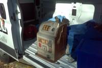slot machine pace 4