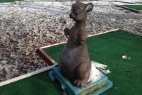 miniature gold kangaroo