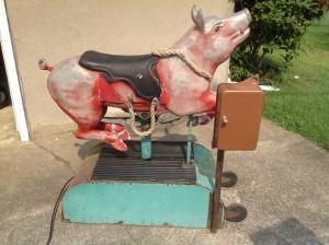 pig ride cion op 1