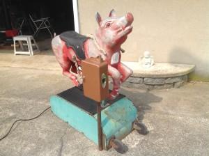 pig ride cion op 3