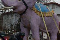 elephant circus 2017 3
