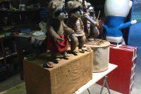 racoon display 4