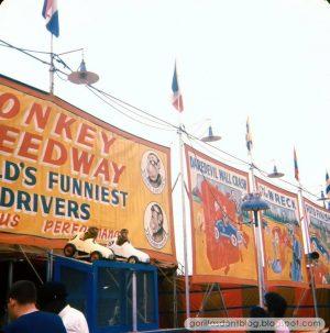 monkey speedway live