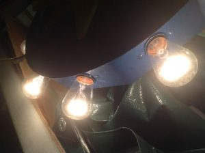 carousel center head light 5