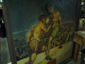 boxer 17