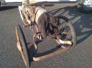 bike horse 13