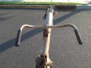 bike horse 14