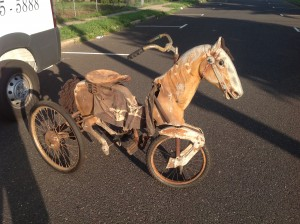 bike horse 5