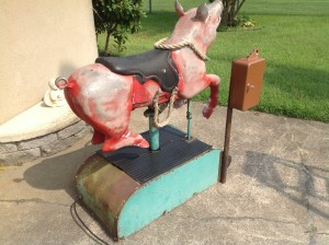 pig ride cion op 2