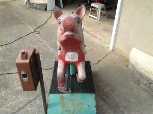 pig ride cion op 9