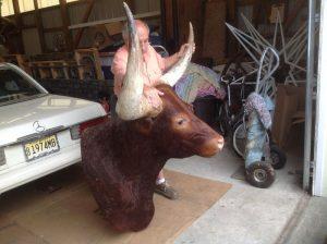 taxidermy bull 2