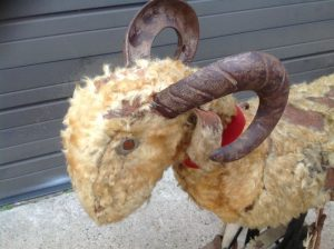 odd fellows goat 7