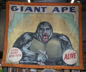 banner 2018 giantape1