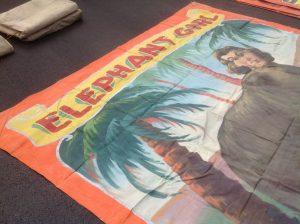 banner elephant girl 32019
