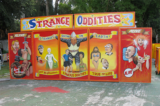 Strange Oddities